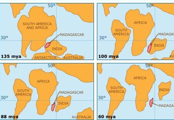 I movimenti tettonici di India e Madagascar, tra le quali si trovava Mauritia, tra 135 e 60 milioni di anni fa