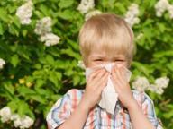 Rinite allergica, servono tre anni   di immunoterapia per «guarire»
