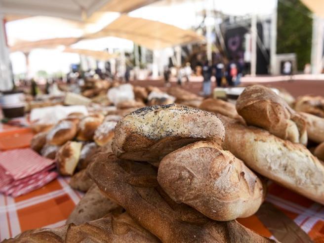 Se un panino costa (all'ambiente) più di mezzo chilo di CO2
