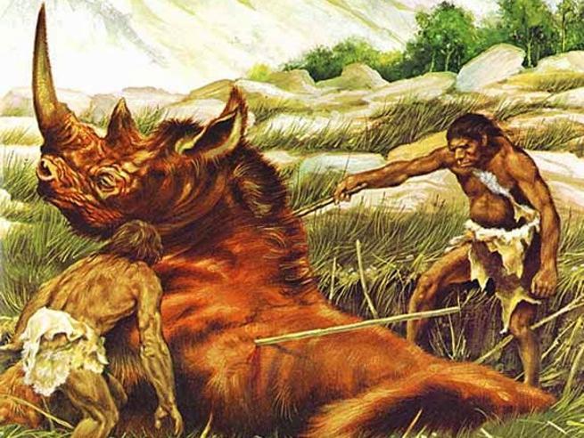Rinoceronte, muflone, funghi e pinoliEcco la dieta dei Neanderthal