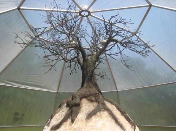 L'installazione «olfattiva» Tree Virus dell'artista Peter De Cupere al Belmonte Arboretum di Wageningen (2008)