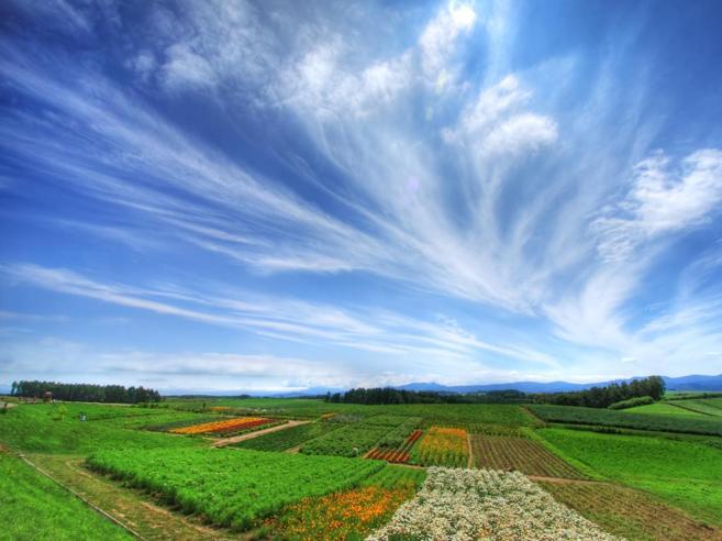 Le nuvole, sentinelle del clima