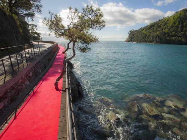 Rapallo-Portofino, il red carpet più lungo (e bello) del mondo