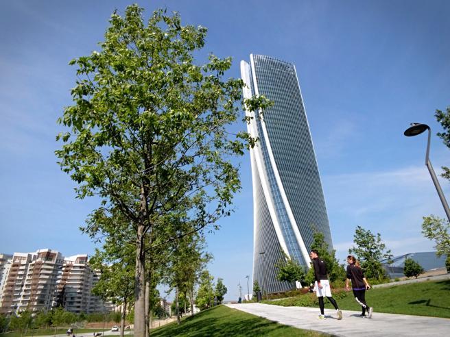 Milano, gli alberi di trenta pianinon sono più uno sberleffo Foto