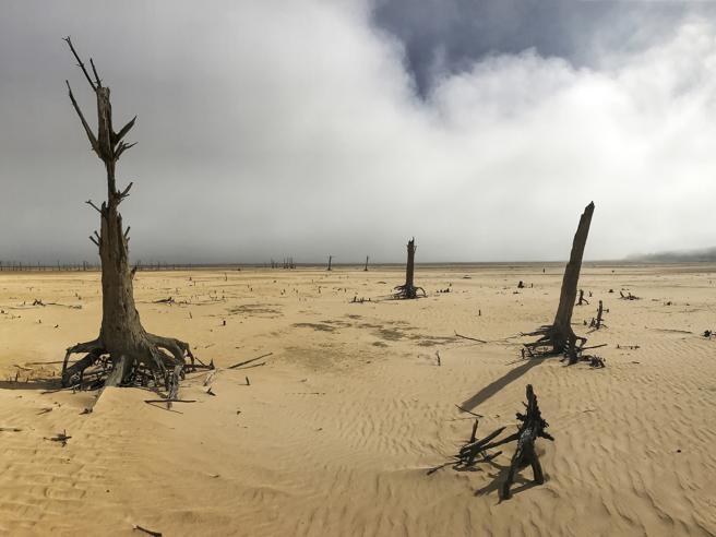 Pianeta a rischio: la mobilitazione ecologica globale dopo il no Usa