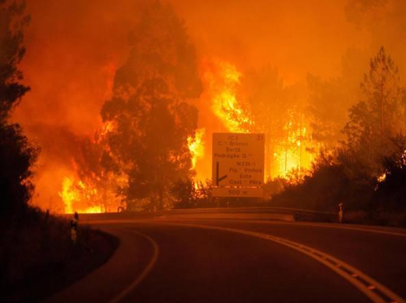 Portogallo, incendio nei boschi di Pedrogao Grande. Morti e feriti