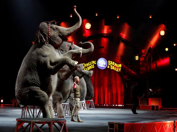 Il circo Barnum chiuso dopo 140 anni di attività (Reuters)