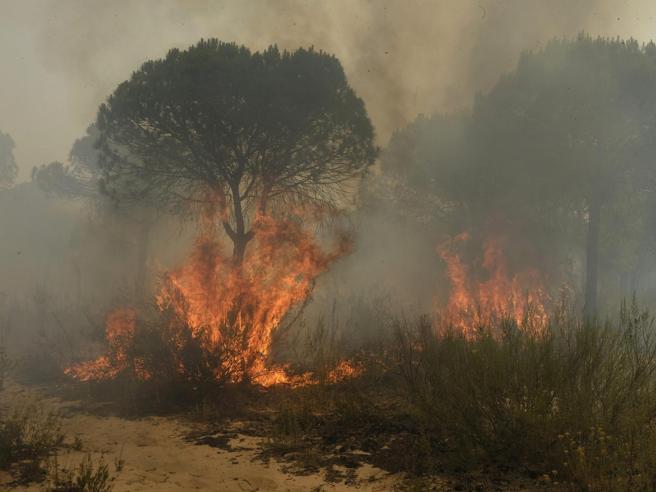 Spagna, brucia  parco naturale 2000  già evacuati  foto|video