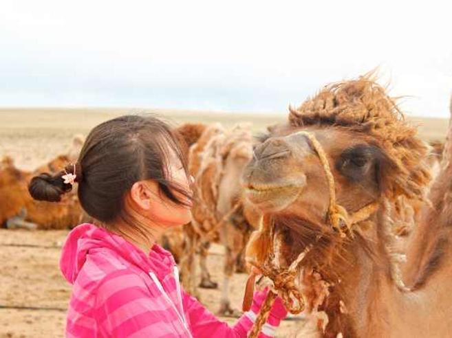 Dalla Mongolia alla Svezia per diventare «leader di sostenibilità»