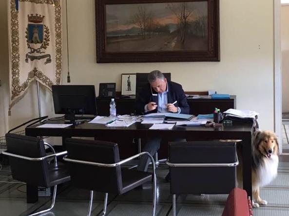 Il sindaco di La Spezia, Pierluigi Peracchini, in ufficio con il suo Bucky (foto da Facebook)