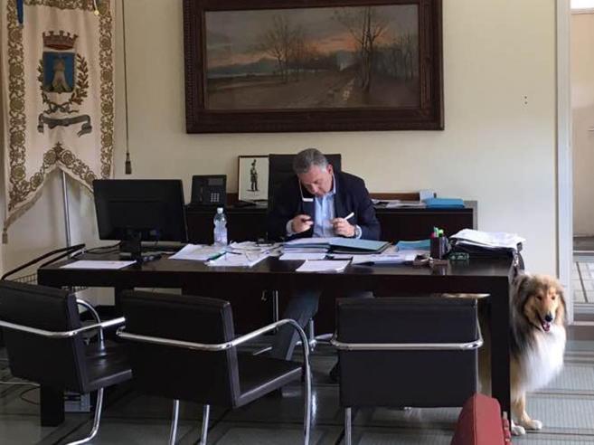 Da Putin al sindaco di La SpeziaQuando al lavoro si va col cane