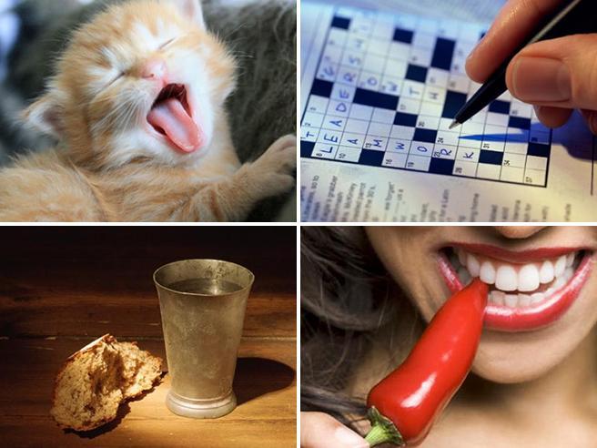 Cinquanta abitudini che ti possono aiutare a vivere più a lungo (secondo la scienza)