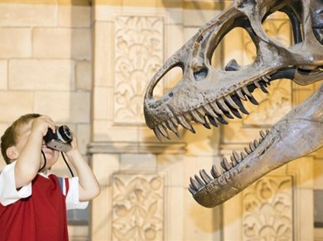 Per gioco al museo: 30 idee per vacanze creative (con i bambini al seguito)