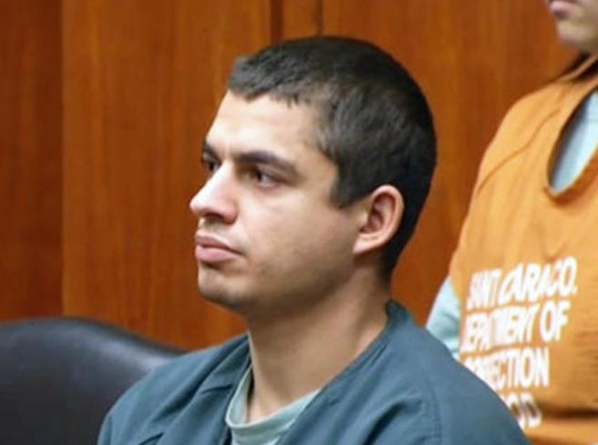 Usa, seviziò e uccise 21 gatti: condannato a 16 anni di carcere