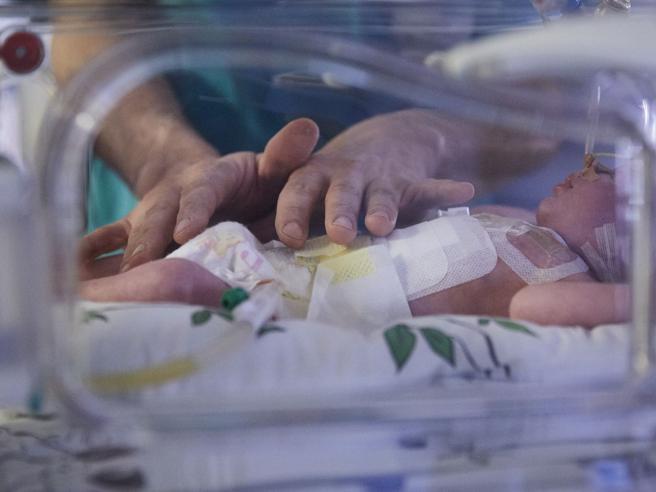 Prematuri, il «tocco delicato» che aiutaa crescere più sani(fin dall'incubatrice)