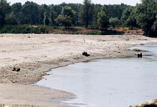 Il fiume Po in secca (Ansa)