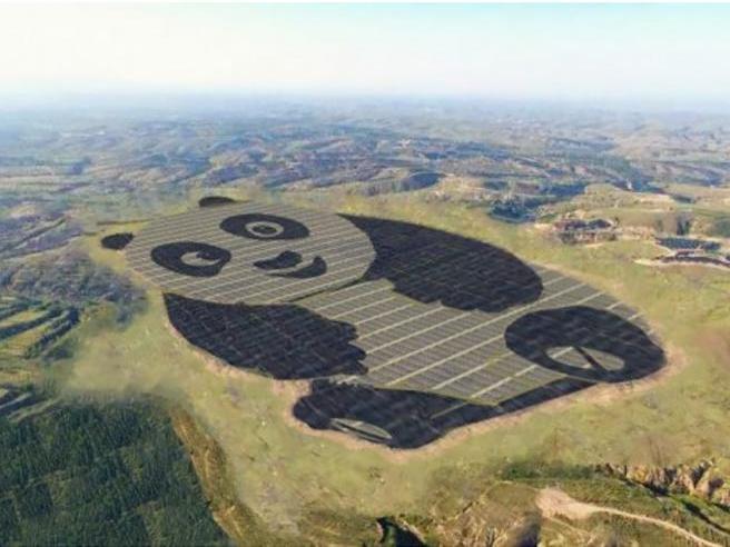 L'impianto solare «più tenero» al mondo? In Cina, a forma di panda
