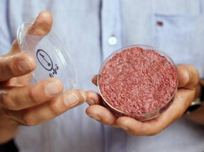 Che sapore ha, come viene creata?Carne sintetica entro il 2021: tutto quello che c'è da sapere