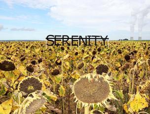 Rero, Untitled (Serenity), Francia, 2013 (courtesy dell'artista)