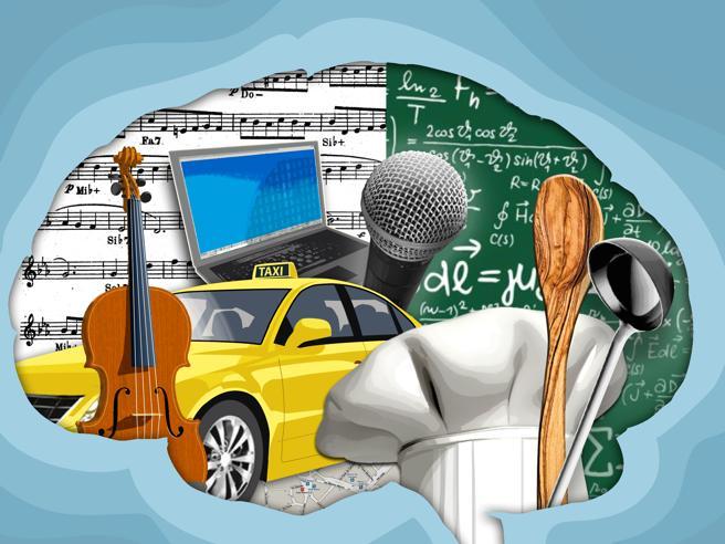 Fai lo chef, il tassista o il matematico? Come il lavoro ci cambia il cervello