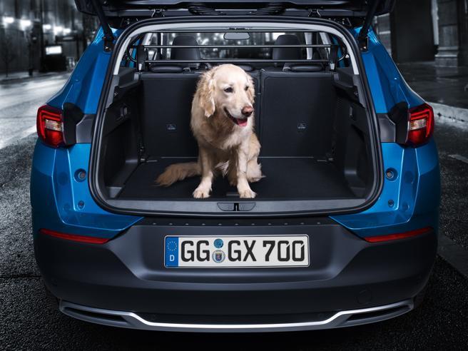 Opel Grandland X, nuova arrivatanella ricca famiglia dei CrossoverLa carica dei nuovi Suv e Crossover