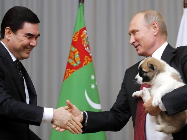 Putin riceve in dono un cucciolo di cane Alabai
