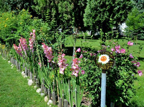Nel giardino di anna dove cresce l anima di tutto il for Tutto x giardino