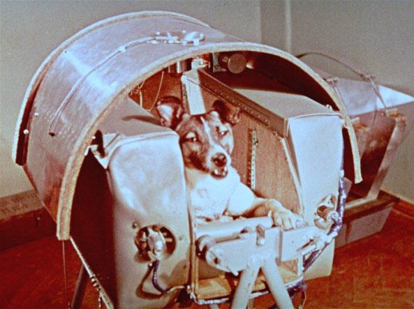 Sputnik 60 anni fa il viaggio della cagnetta laika for Necrologio corriere della sera
