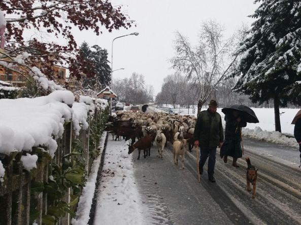 Meteo Ponte dell'Immacolata: neve, gelo e maltempo