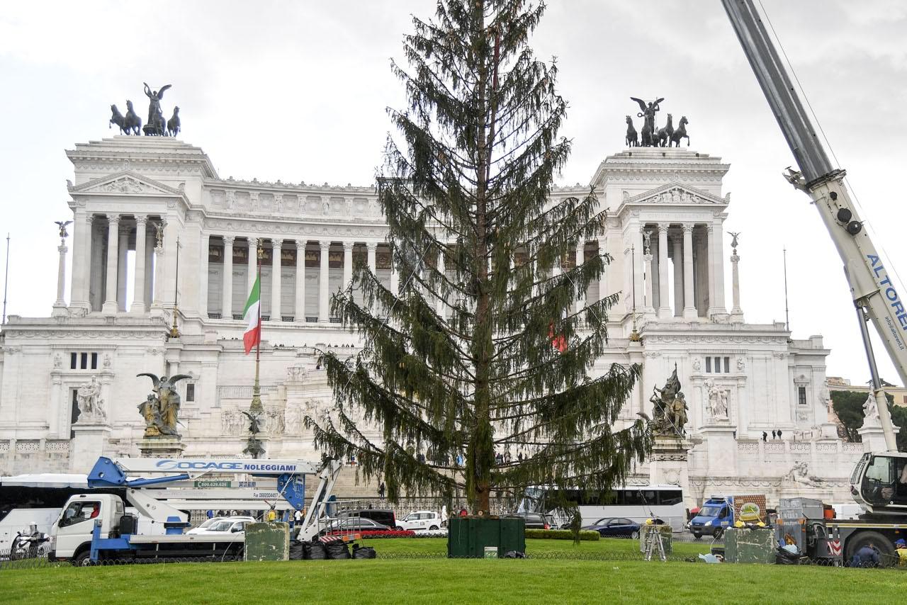 Albero Di Natale Roma 2019.Top 10 Punto Medio Noticias Foto Albero Di Natale 2018 Roma