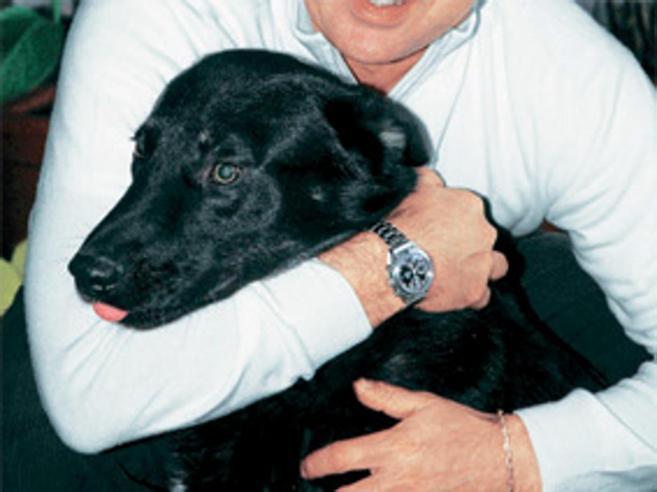 Un milione  ai suoi cani: la volontà (rispettata) di un anziano di  Pavia