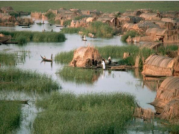 Villaggio arabo-sciita nelle paludi meridionali irachene (la foto è del 1974: l'intera area fu distrutta da Saddam nel 1991 in seguito alla sollevazione degli sciiti)