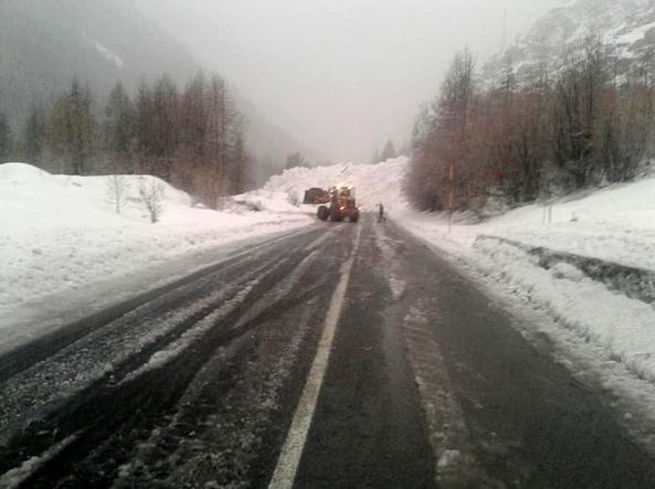 Nevica e l'albero caduto blocca la strada: donna muore in ambulanza