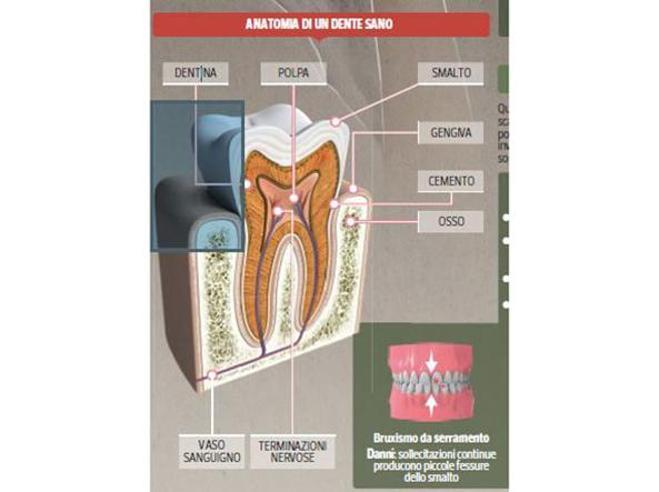 Da che cosa è provocato il mal di denti?