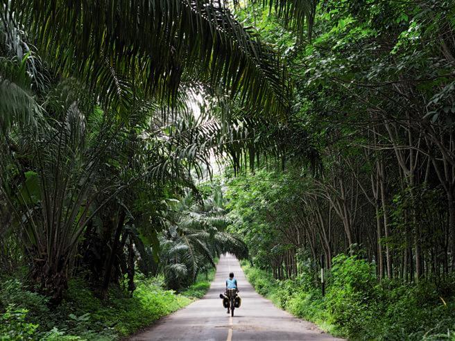 Cesena - Singapore: 385 giorni in bici (con l'insulina)
