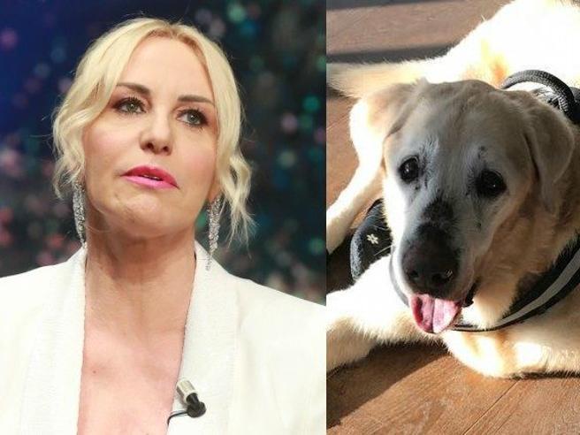 Il dolore di Antonella Clerici per la morte del cane Oliver: «Sei stato il mio primo figlio»