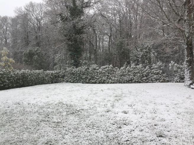 Allerta maltempo: in arrivo pioggia e neve anche a bassa quota