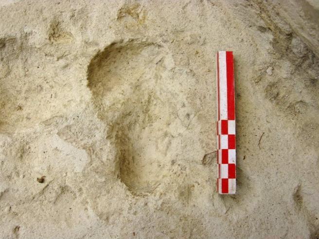 Margherita  e i giovani archeologi: «Anni di lavoro per quell'orma»