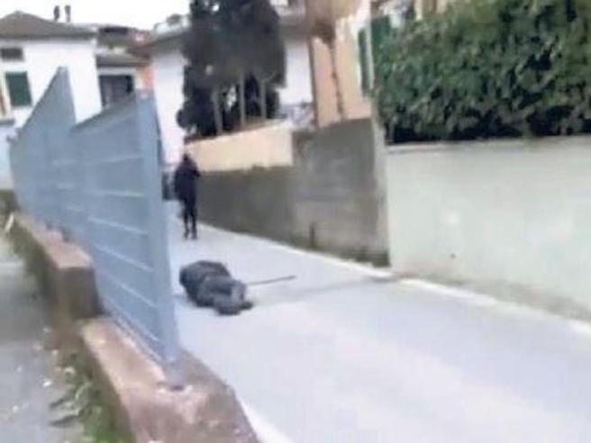 Aggrediscono invalido, gli strappano il bastone e poi posta