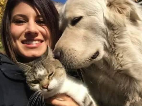 Il cane Miro torna a casa: disposto il dissequestro