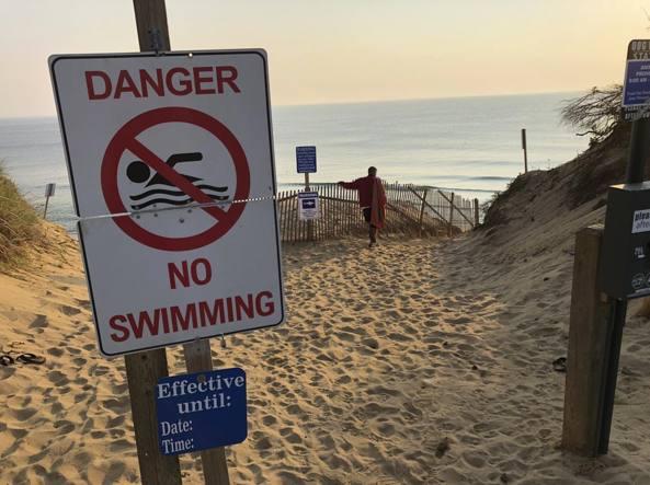 Squalo uccide un surfista di 26 anni non accadeva da ottanta anni