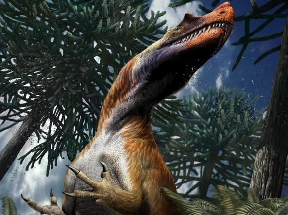 Saltriovenator zanellai, il dinosauro e predatore più grande e antico è italiano