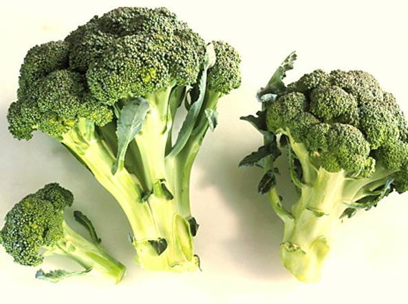 Una molecola presente nei broccoli potrebbe sopprimere lo sviluppo del tumore