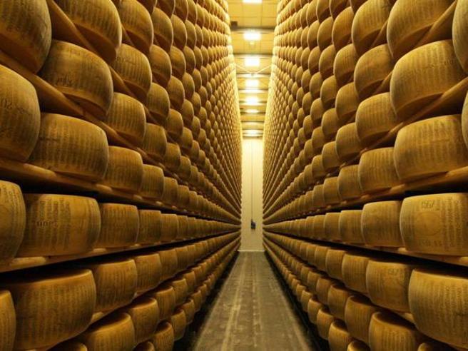 Il Parmigiano Reggiano diventa francese: Lactalis rileva il capitale di Nuova Castelli