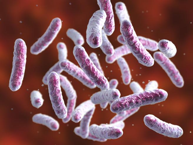 Antibiotici superpotenti per i batteri killer