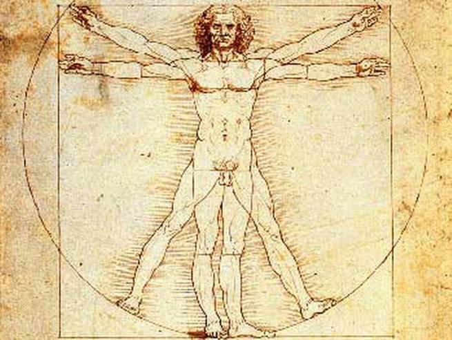 Uomo vitruviano di Leonardo: il Tar sospende il prestito al Louvre