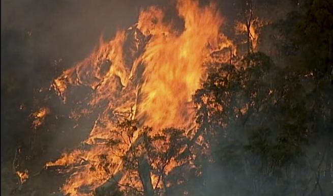 Incendi, le fiamme sfiorano anche Sydney e Melbourne - Planet