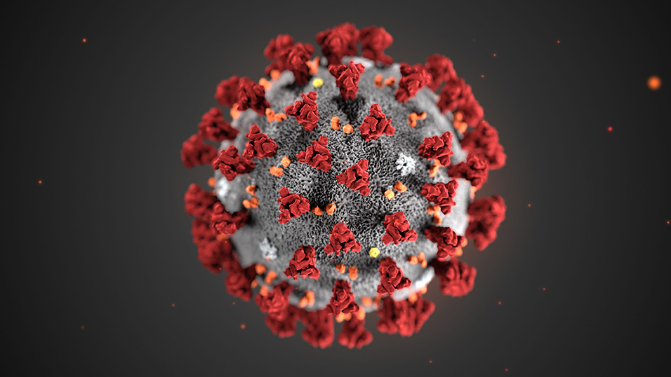 Coronavirus, la Commissione sanità cinese: