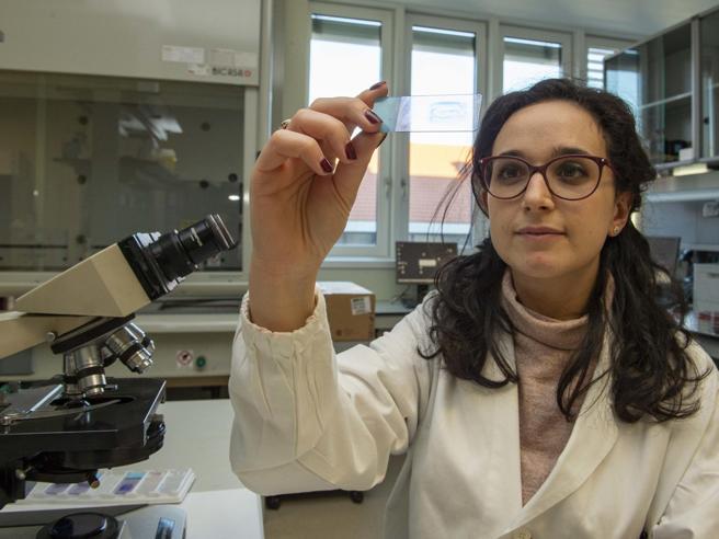 Isolato il ceppo italiano del coronavirus: nel team 3 ricercatrici precarie