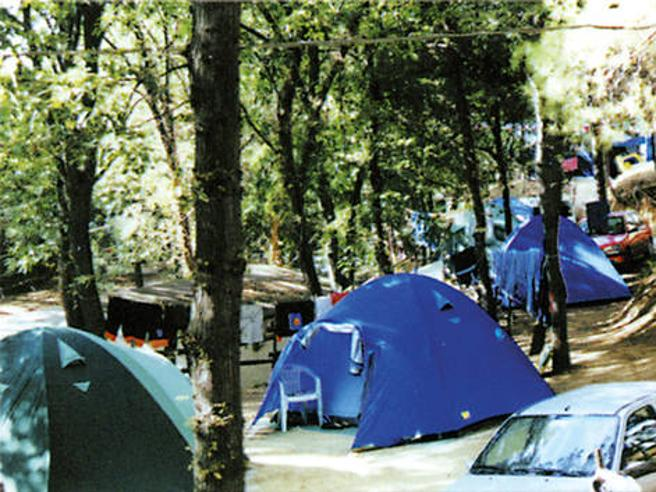 Coronavirus, le regole in campeggio e nei rifugi. Centri estivi, per i bambini no accompagnatori  over 60
